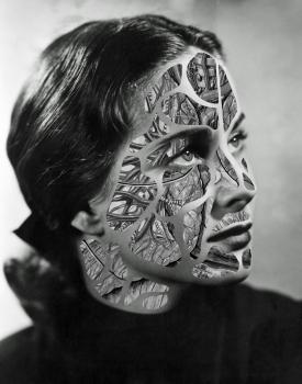 https://dojo.electrickettle.fr/files/gimgs/th-93_Skinned-Beauty_1000px.jpg